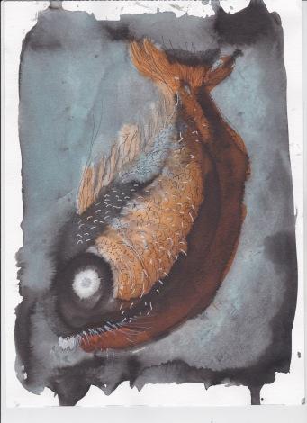 poisson poisson